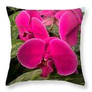 Hot Pink Orchids Throw Pillow