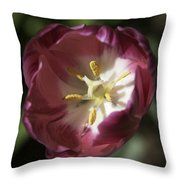 Hot Pink Tulip Center Squared Throw Pillow