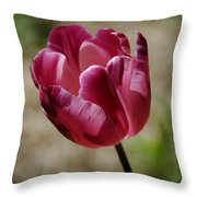 Hot Pink Tulip Squared Throw Pillow