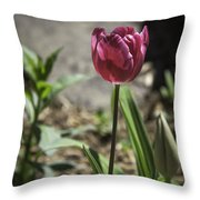 Hot Pink Tulip Throw Pillow