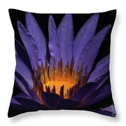 Hot Purple Water Lily Throw Pillow