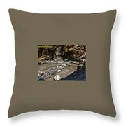 Hotel Booking System In Manali Throw Pillow