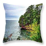 Houghton Falls Throw Pillow