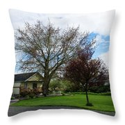 House At The City Limits Throw Pillow