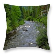 House By The Stream In Vail 2 Throw Pillow
