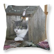 House Cat Throw Pillow