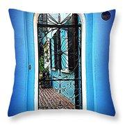 House Door 4 In Charleston Sc  Throw Pillow by Susanne Van Hulst