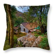 House In China Woods Throw Pillow