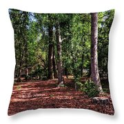 House In The Woods Throw Pillow