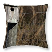 House On A Crooked Fence Post Throw Pillow