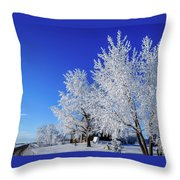 House On The Outskirts 1 Throw Pillow