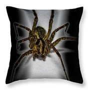 House Spider Throw Pillow