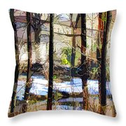 House Surrounded By Trees 2 Throw Pillow