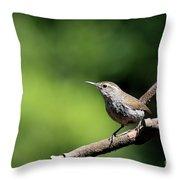 House Wren . 40d8055 Throw Pillow