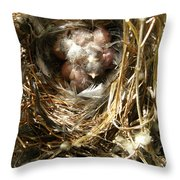 House Wren Family Throw Pillow