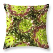Houseleek Throw Pillow