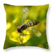 Hoverfly On Yellow Flower Throw Pillow