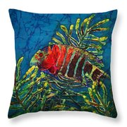 Hovering - Red Banded Wrasse Throw Pillow