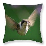 Hovering Hummingbird Throw Pillow