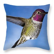 Hovering In Sky Throw Pillow