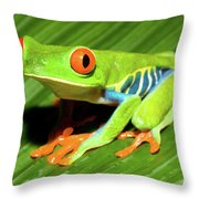 How About Some Real Color Throw Pillow