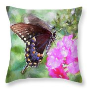 How Beautiful It Is Throw Pillow