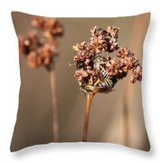 How Bees Keep Warm  Throw Pillow