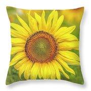 How Do You Dew, Sunflower Throw Pillow