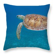 How Green It Is Throw Pillow