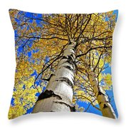How High Is It Throw Pillow