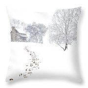 How Many Snows? Throw Pillow