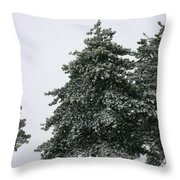 How Picturesque Throw Pillow