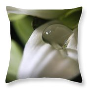 How Still The Petal Throw Pillow