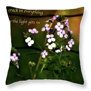 How The Light Gets In Throw Pillow