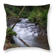 How The River Flows Throw Pillow
