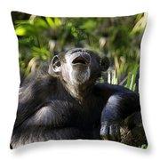 Howling Chimpanzee Throw Pillow