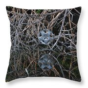 Hub In Reflection Throw Pillow