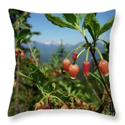 Huckleberry Flowers Atop Huckleberry Mountain In Glacier National Park Montana Throw Pillow