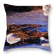 Huddling On A Winter Day  Throw Pillow