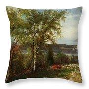 Hudson River At Croton Point Throw Pillow