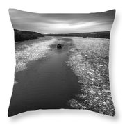 Hudson River In Winter Throw Pillow