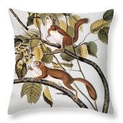 Hudsons Bay Squirrel Throw Pillow
