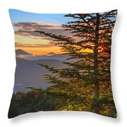 Hug A Tree. Throw Pillow