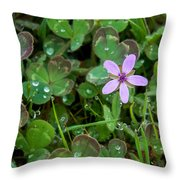 Huge Beauty In A Small Wildflower Throw Pillow