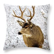 Huge Buck Deer In The Snowy Woods Throw Pillow