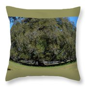 Huge Live Oak Fisheye Throw Pillow