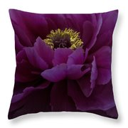 Huge Magenta Peony Throw Pillow