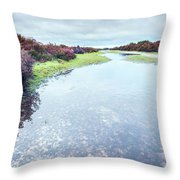Huge Puddle Throw Pillow