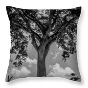Huge Tree 12 Throw Pillow