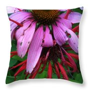 Hugging The Curves Throw Pillow